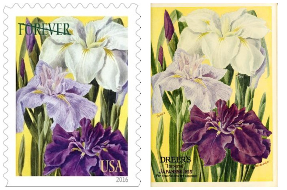 botanical-art-stamp-pair-8_collectpostmarks_com